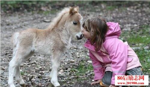 人和动物的感人故事