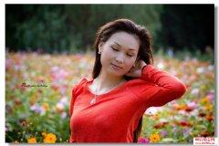 关于花儿背后的爱情微故事和花语大全