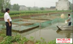 农村养殖创业:退伍