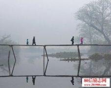 四个人过桥的哲理故