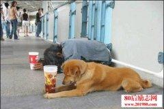 乞丐的炼成 乞丐是