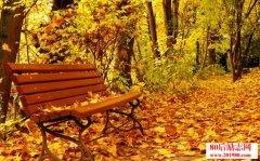 秋天的美文 秋依偎