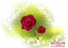 独一无二的玫瑰