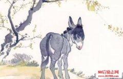 山上有头驴的故事及