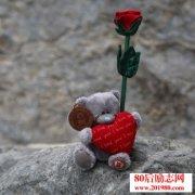 乞丐和玫瑰的故事