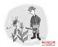 农夫和蜜蜂的故事: