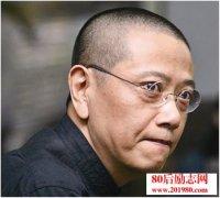 陈丹青:文凭是平庸