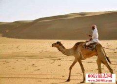 沙子的故事,如何把