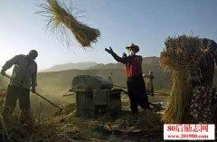 《农民之歌》,说出