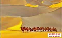 唐诗里描写沙漠的古