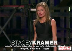 stacey kramerTED演讲: