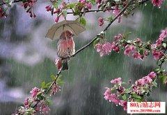 <b>听雨,原来那么美!</b>
