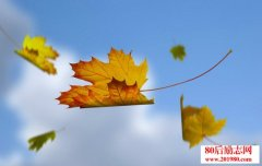关于落叶的唯美句子,描写秋天落叶的诗句