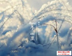 关于冬至的诗句和冬