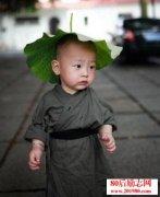 禅门公案:小和尚种