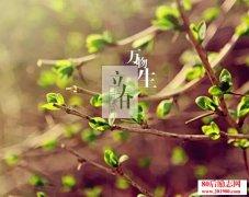 <b>关于春天的美文:咏春</b>