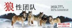 """<b>要想打造狼性团队,管理者如何做好团队的""""头狼""""?</b>"""