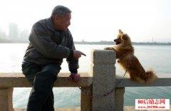 老人和狗的故事:凡