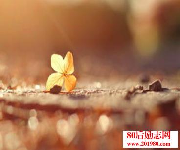 注会考试日志:努力到让自己满意,才会有奇迹