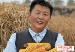 山东吕梁农民的淘宝