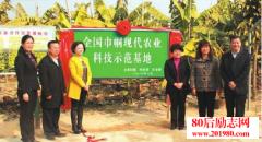 广州农村妇女科学种