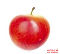 营销界经典卖苹果案