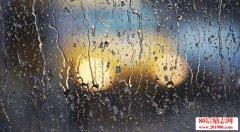生命如雨,你得忍受