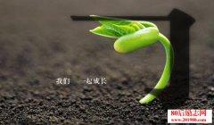 最好的教育是成长自己