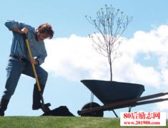 <b>先定一个小目标,每天种下100粒橡树籽</b>