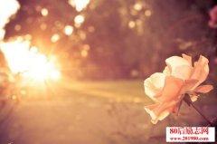 <b>早安晨语,鼓励人努力奋进的早安语录!</b>