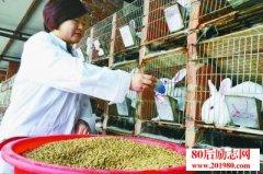 <b>一个北京姑娘在河北涿鹿獭兔养殖创业,带领村民共同致富</b>