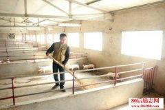 <b>陕西淳化一村官的创业故事,家庭养殖带领村民脱贫致富</b>