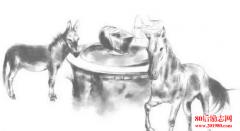 <b>四个故事,检验你是千里马还是头驴</b>