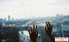 分手后的伤感句子:我是曾经勇敢飞过你天空的囚鸟