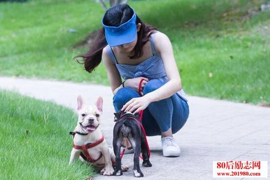 遛狗,90後女大學生的兼職創業故事:奇葩兼職項目讓她月入過萬