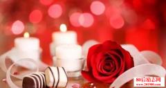情人节的英文表白句子,愿你新年抱得美人归