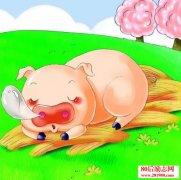 <b>奇思妙想的故事:小猪的理想</b>