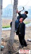 <b>河北井陉县两个残疾老人身残志坚种树的故事</b>