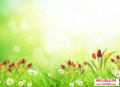 春天的谚语有哪些?关于春天的谚语俗语