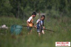 一篇小学生作文:快乐的乡村生活