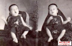 一对双胞胎兄弟的故