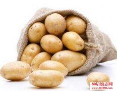 做人要像土豆一样