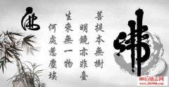 禅语感悟人生的句子