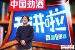 开讲啦刘方磊演讲稿:用建筑讲述中国故事(237期)