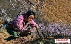 一名80后女大学生在吕梁山