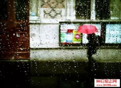 人情不过一阵雨