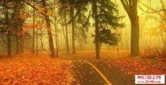 描写秋天的词语,关于秋天的成语