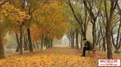 秋天美文欣赏