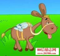 <b>一头蠢驴的故事,愚蠢的实质是什么?</b>