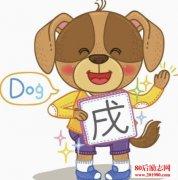 <b>狗年到了,关于狗的歇后语你知道多少?</b>
